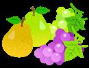 果物はおやつ程度に