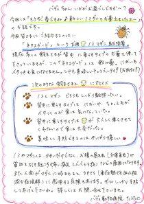 「ネクスガード」という犬用ノミ・マダニ駆除薬