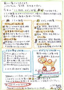 ノミ予防・マダニ対策のお話