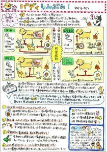 消化管内寄生虫について